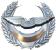 les forces aériennes-القوات الجوية